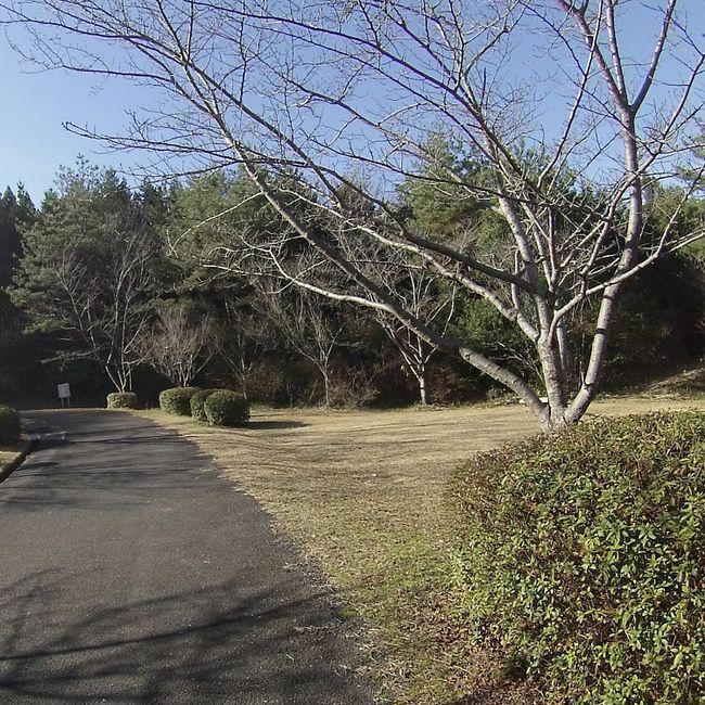 Winter of Kyotanabe