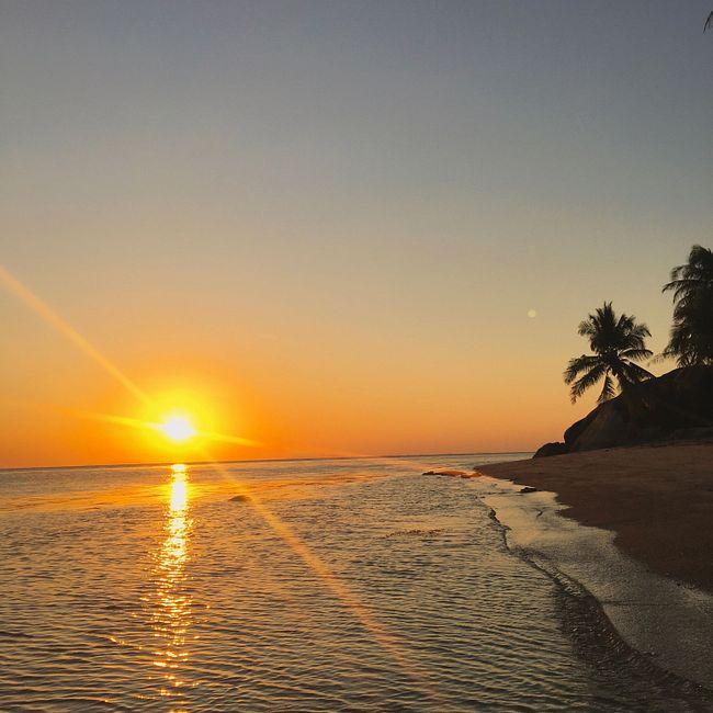 youANDme — DHM Podcast #857 (Special Sunset Set / Live@Samsara Beach / Koh Phangan, Thailand 2020)