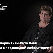 Хвала несовершенству — Наталья Гуляева