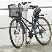 Free Bike. Из Санкт-Петербурга в Крым