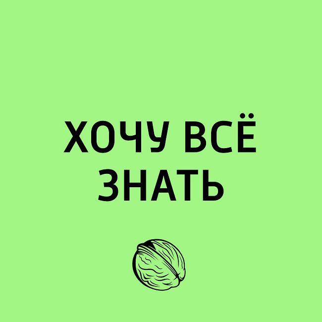 Книжная полка. Книги, без которых нельзя жить в 2018 году