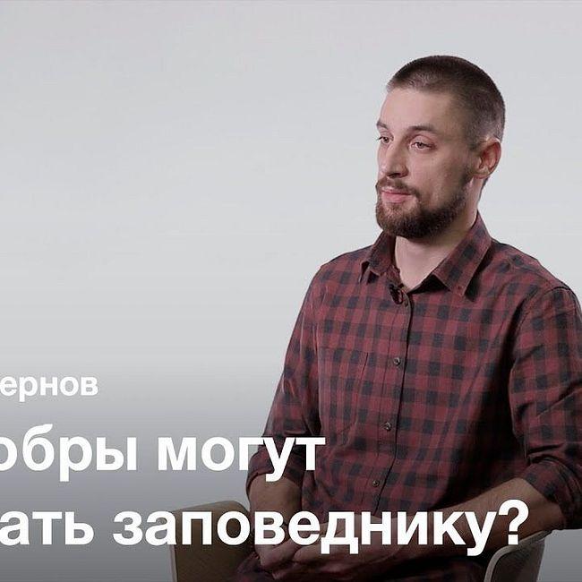 Размывание понятия «экология» — Тимофей Чернов