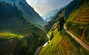 «Рис — в Юго-Восточной Азии всему голова» // Петр Воронков — о традициях региона