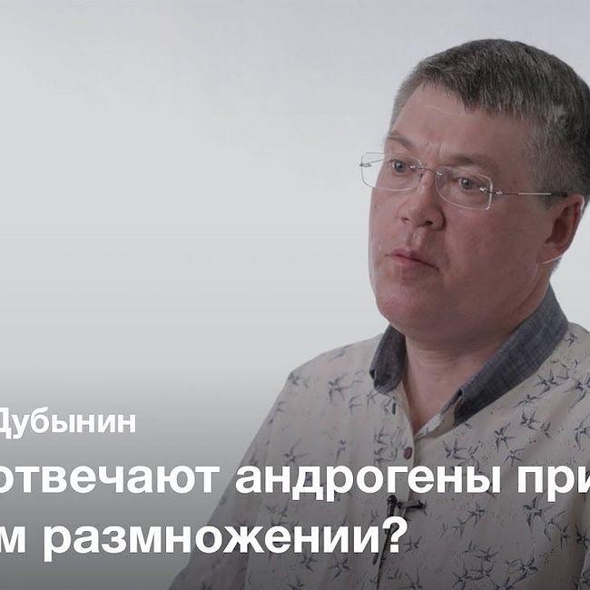 Роль мужского мозга в размножении — Вячеслав Дубынин