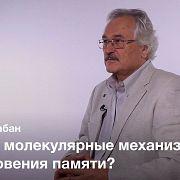 Модификация памяти —Павел Балабан