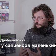 Освоение огня – Станислав Дробышевский