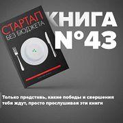 Книга #43 - Стартап без бюджета   Микаловиц Майк