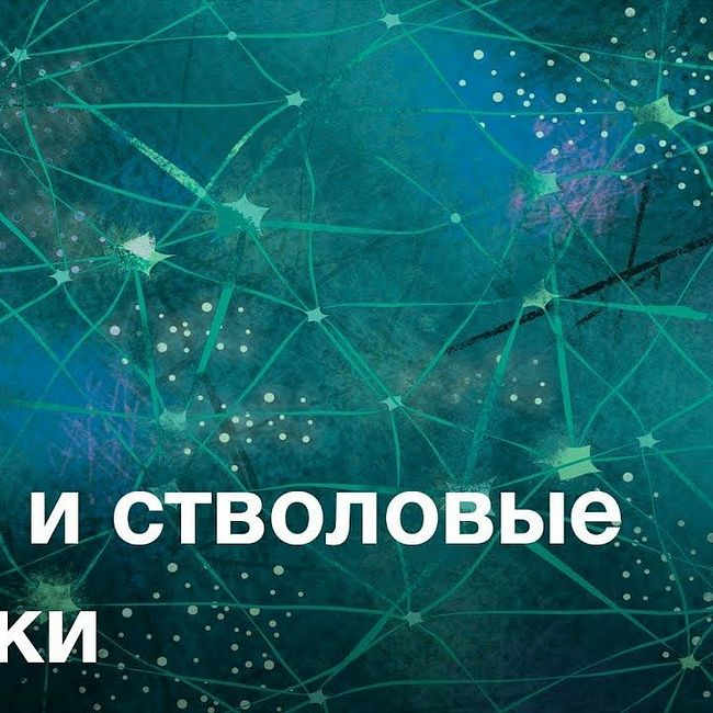 Гены и стволовые клетки — курс Сергея Киселева