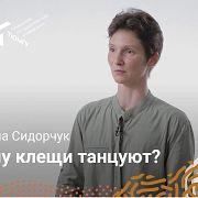 Ископаемые клещи — Екатерина Сидорчук