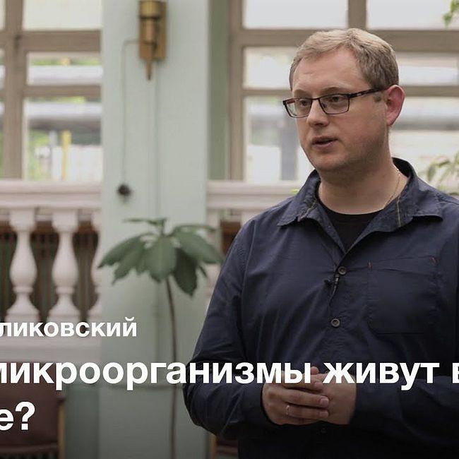 Биогеография микроводорослей — Максим Куликовский