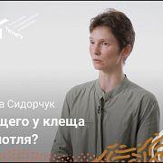 Эволюция и происхождение клещей — Екатерина Сидорчук
