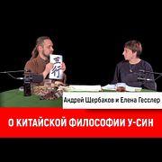 Андрей Щербаков и Елена Гесслер о китайской философии у-син