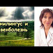 Анилингус и венболезнь