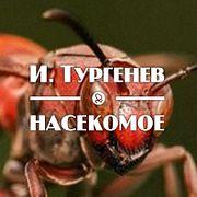 """И. Тургенев """"Насекомое"""""""
