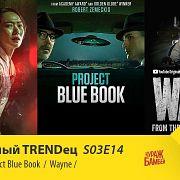 """Королевство \ Wayne \ Проект """"Синяя Книга""""   Сериальный TRENDец   S03E14 (Кураж-Бамбей)"""