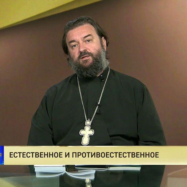 Протоиерей Андрей Ткачев. Естественное и противоестественное