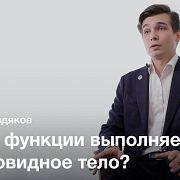 Ишемические и пролиферативные болезни зрения — Алексей Ердяков