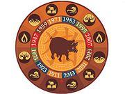 Восточный гороскоп на 2018 год для Свиньи