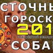 Восточный гороскоп на 2018 год для Собаки
