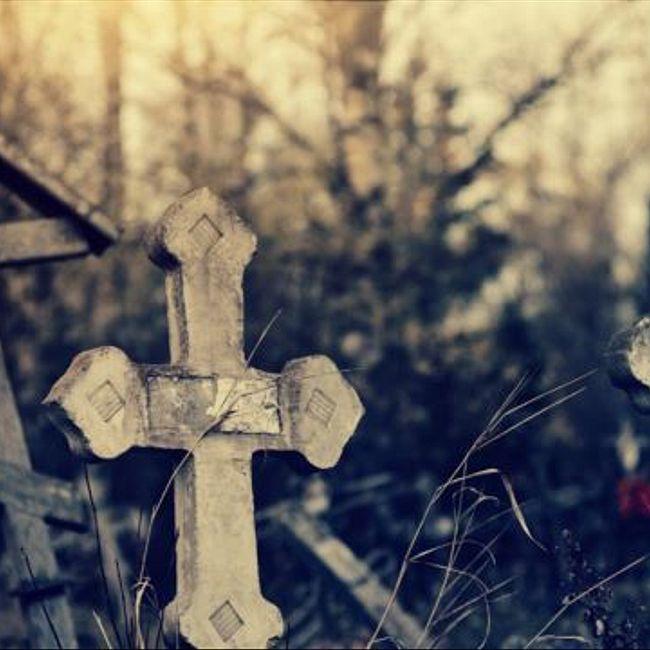 Кладбищенское хозяйство - 26 января, 2020