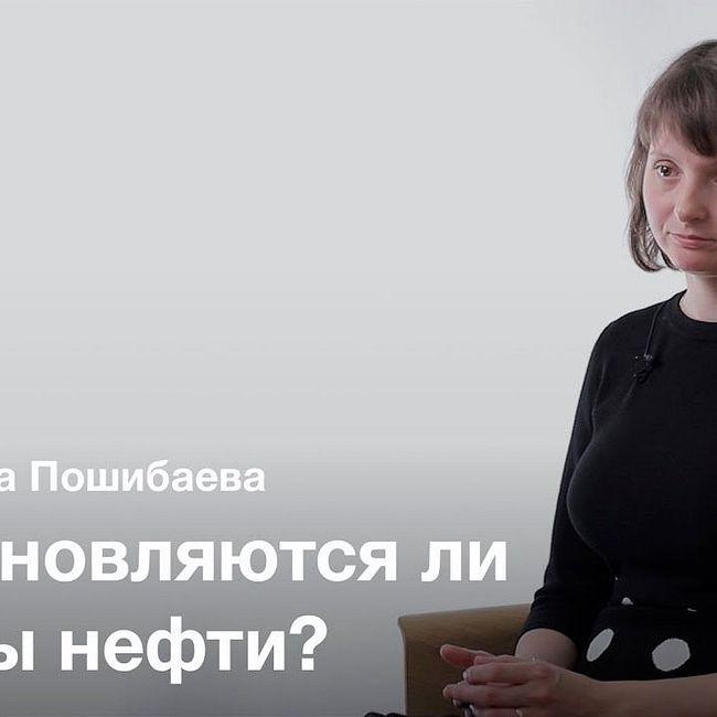 Происхождение нефти — Александра Пошибаева