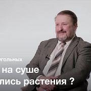 Первые наземные продуценты — Сергей Наугольных