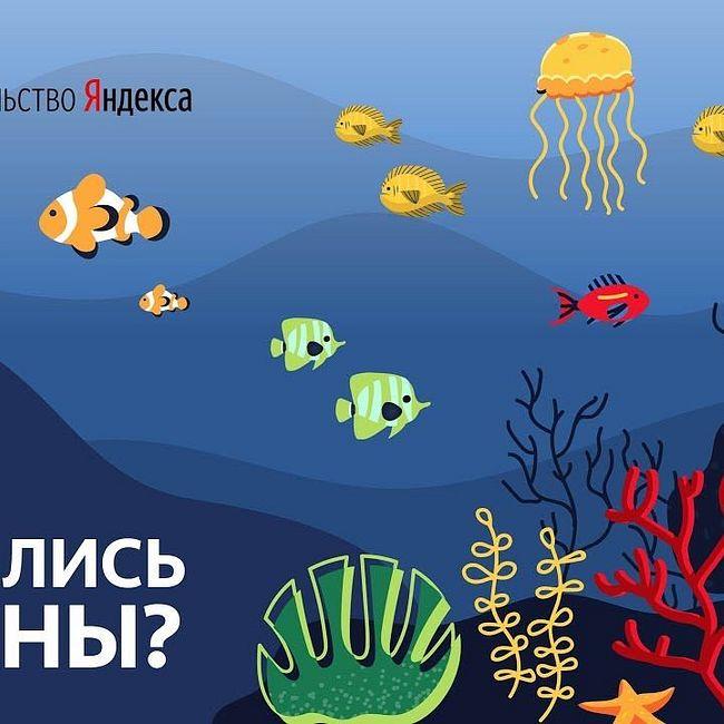 Как появились океаны?