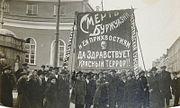 Повседневность Петрограда 1918-1920: голод, террор, заговоры