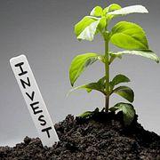 Инвестиции встартап через стартап