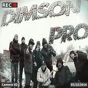 Сектор Газа - Дурак (cover from DimSon PRO)