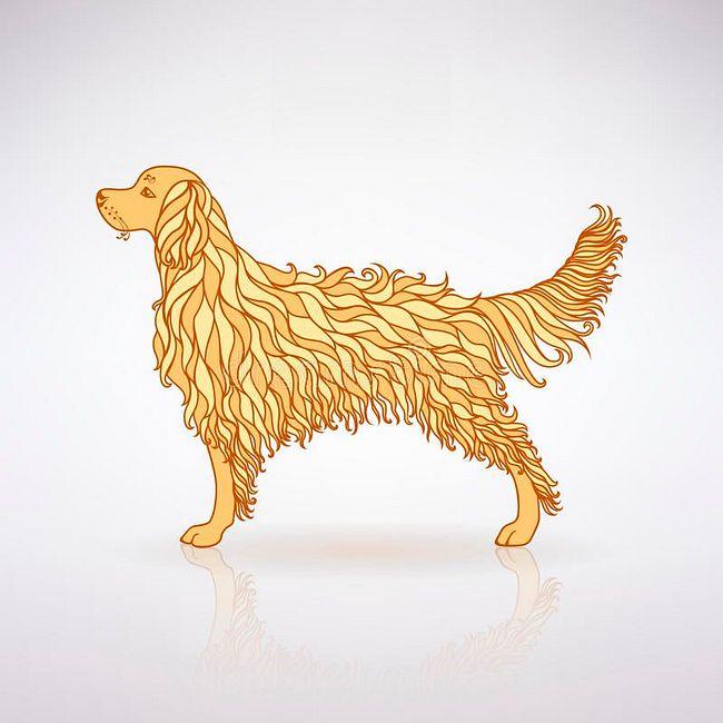 Восточный гороскоп на 2018 год для всех знаков. Год Желтой Земляной Собаки