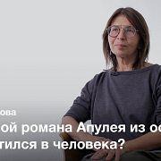 Греческие источники романа «Метаморфозы, или Золотой осел» — Ольга Ахунова