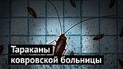 Жуть: больница с тараканами! Нужно ли мне извиняться?