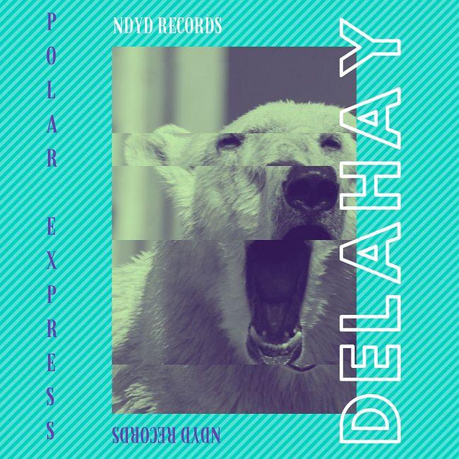 PREMIERE: Delahay — Icelandic Voyage (Original Mix) [NDYD Records]