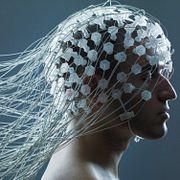 FAQ: Правда ли, что абсорбент, входящий в состав подгузника, поможет изучить мозг?