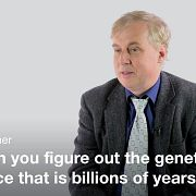 Палеогенетика