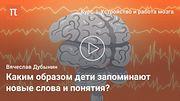 Центры мышления и принятия решений