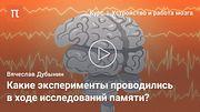 Мозговые центры обучения и памяти