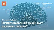 Электрические свойства нейронов