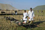 Ко дню медицинского работника: как становятся военными врачами