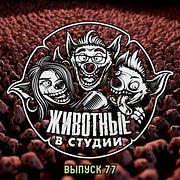 Выпуск 77. Кинжал и Коробочка
