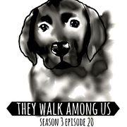 Season 3 - Episode 20