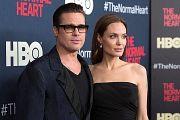 Одинокий Брэдяга любви: правда ли, что Джоли уходит от Питта за измены
