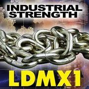 LDMX16