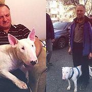 Грибник заблудился в тайге с верным псом, провел там три недели и выжил благодаря заботе о друге