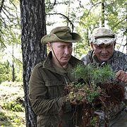 Путин и Шойгу спасли во время отдыха сибирскую сосну
