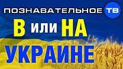 В или НА Украине? Зачем изменили предлог? (Познавательное ТВ, Артём Войтенков)