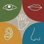 """Курс """"Сенсорный маркетинг: как запах и звук могут влиять на вовлеченность и эмоции"""""""