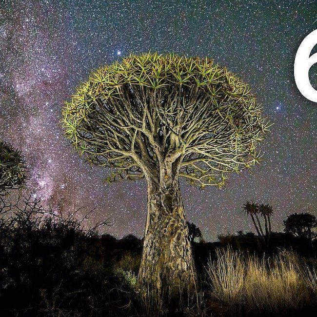 60й подкаст Solo на .NET — Интервью с богословом