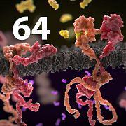 64й подкаст Solo на .NET — Раковая опухоль
